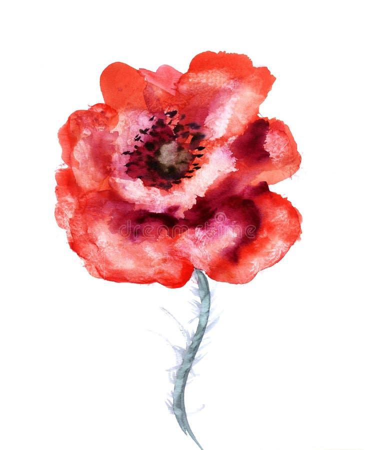 Papavero del fiore dell'acquerello illustrazione di stock