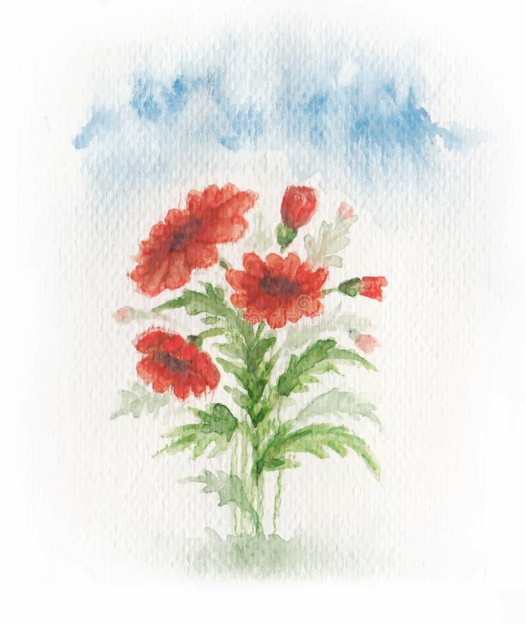 Download Papavero rosso sul prato illustrazione vettoriale. Illustrazione di filiale - 56881115