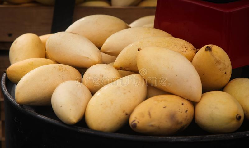 Papaya υγιή φρούτα σε κίτρινο ώριμο papaya στο κιβώτιο στο πλήρες πλαίσιο στοκ φωτογραφία με δικαίωμα ελεύθερης χρήσης