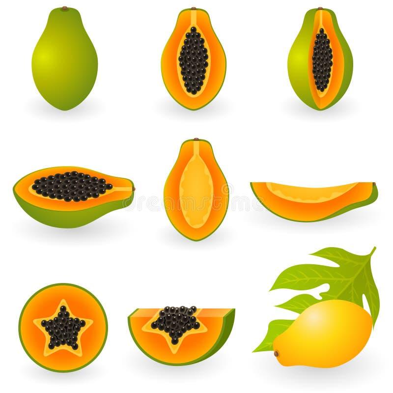 Papaya stock abbildung