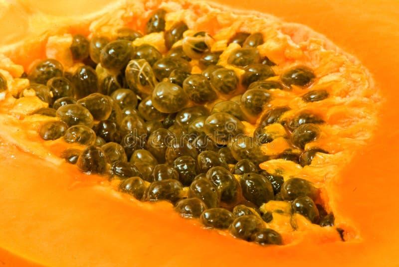 Download Papaya stock photo. Image of food, medicine, papaya, cooking - 16466170