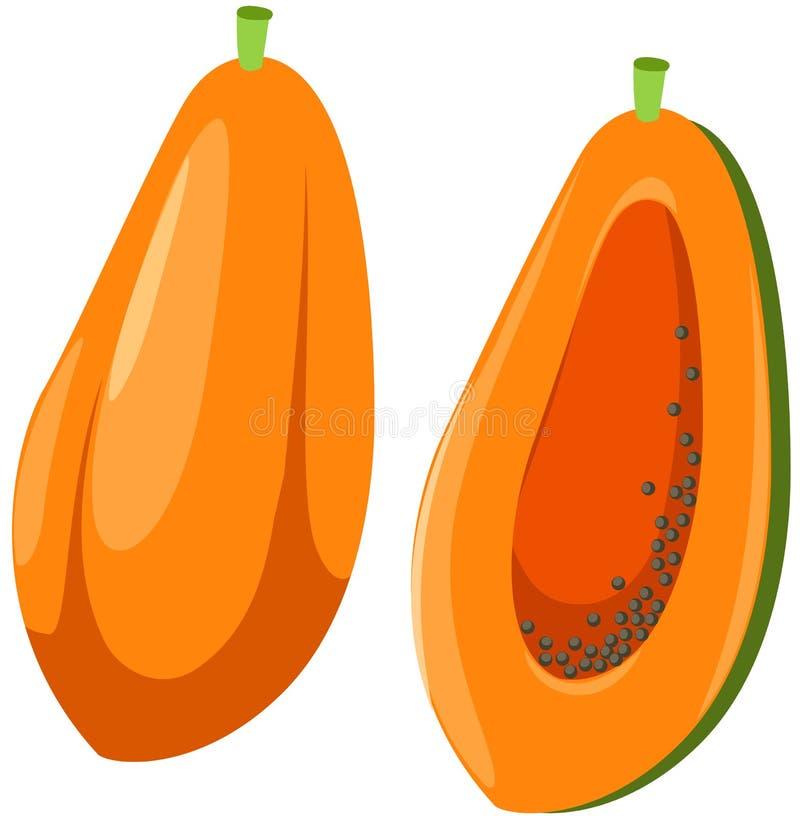 papaya royaltyfri illustrationer