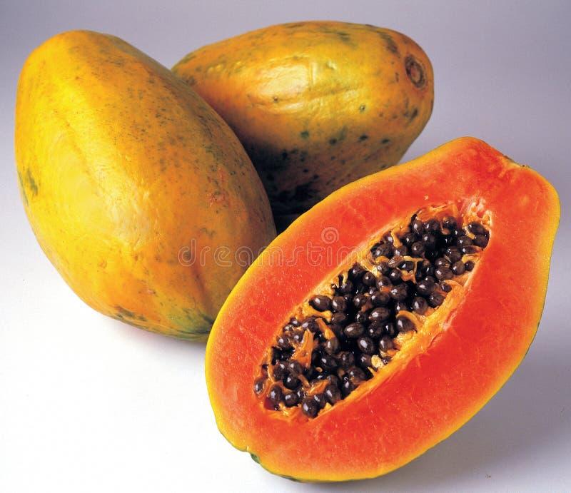 Papaya stockbilder
