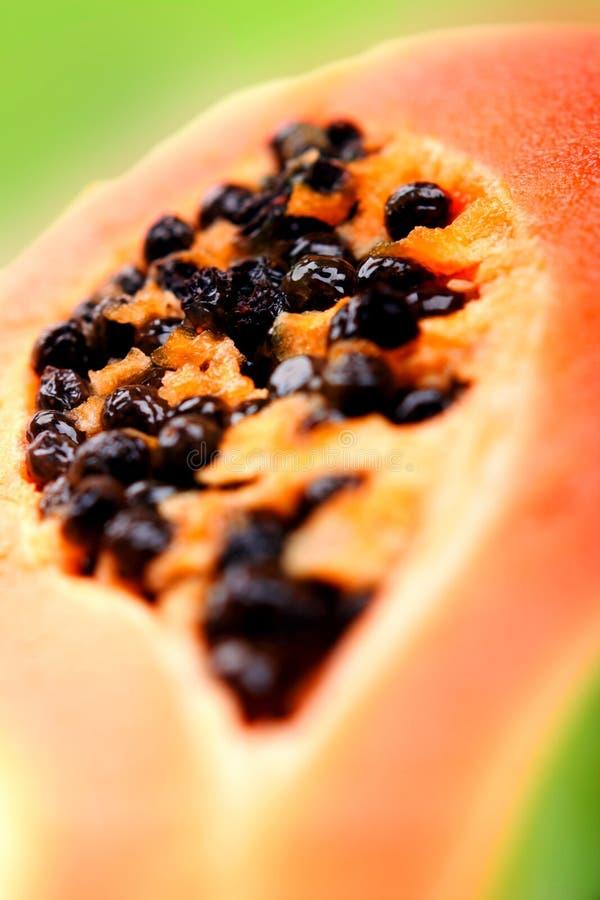 Papaya. Half of papaya. Tropical fruit royalty free stock photo