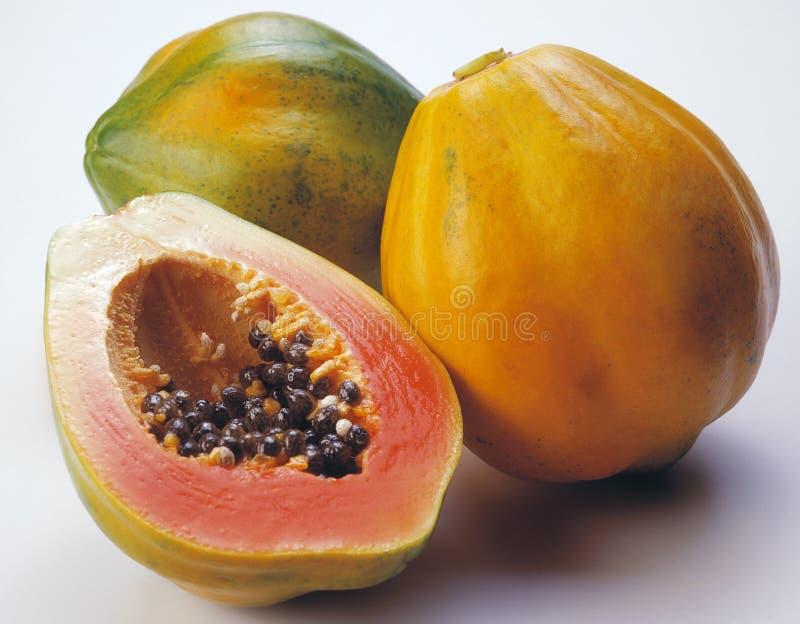 Papaya stockfotos