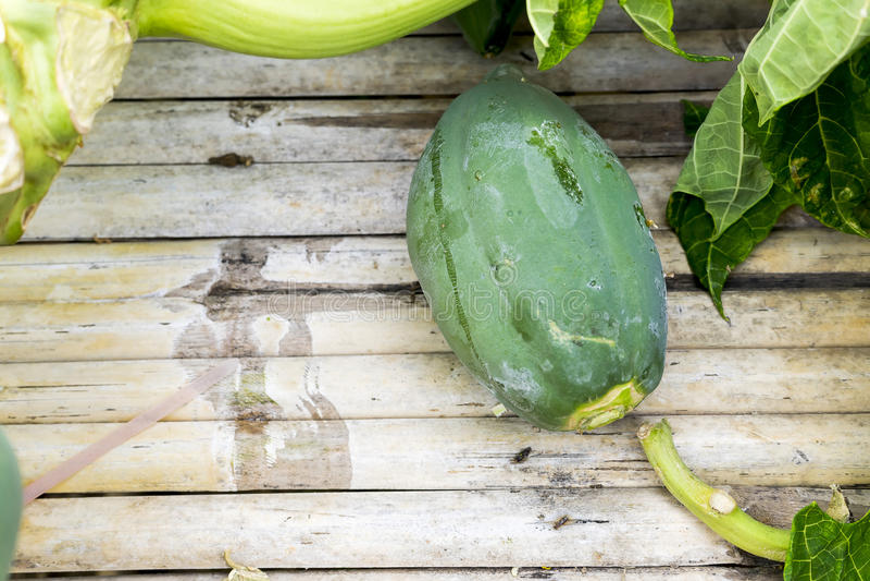 papaya royaltyfria foton