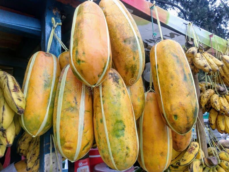 Papaya-Anzeige stockbild