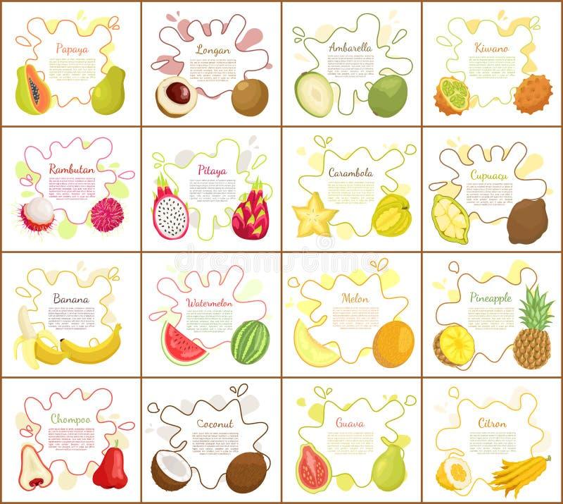 Papaya and Citron Kiwano Set Vector Illustration. Papaya and citron kiwano set of posters vector. Banana and watermelon, pineapple and rambutan. Pitaya and stock illustration