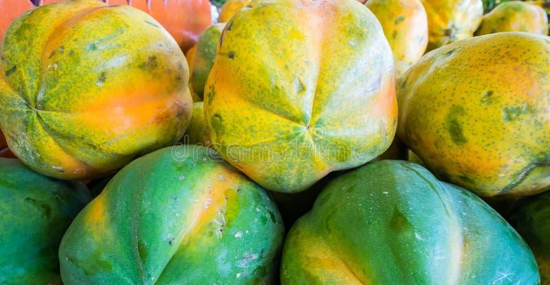Download Papaya stock photo. Image of florida, green, yellow, papaya - 35711034