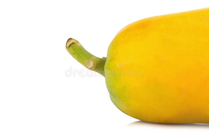 papaya fruit. closeup rear part. color orange. asian. isolated stock photo
