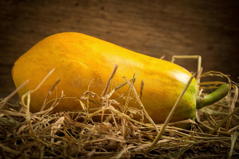 papaya fruit. old wooden. moring. sunset. art. asian royalty free stock photos