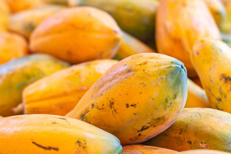 Papaya i marknaden Frukt av orange trämassa med otaligt litet frö tropisk exotisk frukt royaltyfri foto