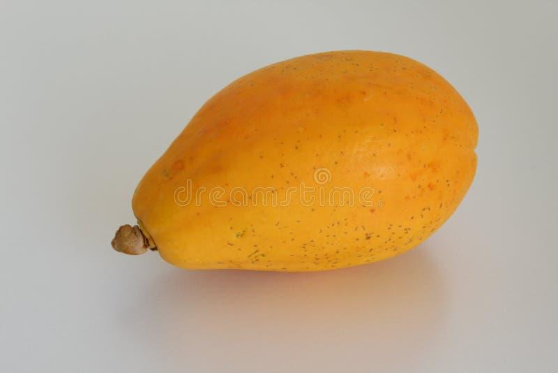The papaya, a fruit native to tropical regions royalty free stock photo