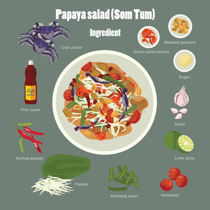 Papaya salad(Som Tum) stock illustration