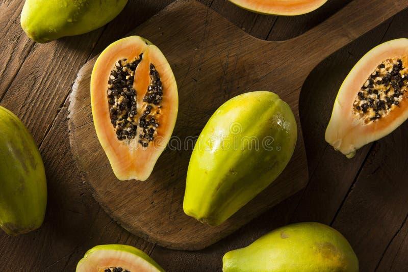 Papaya verde orgánica cruda foto de archivo
