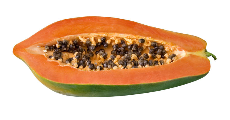 Papayafrucht stockbild