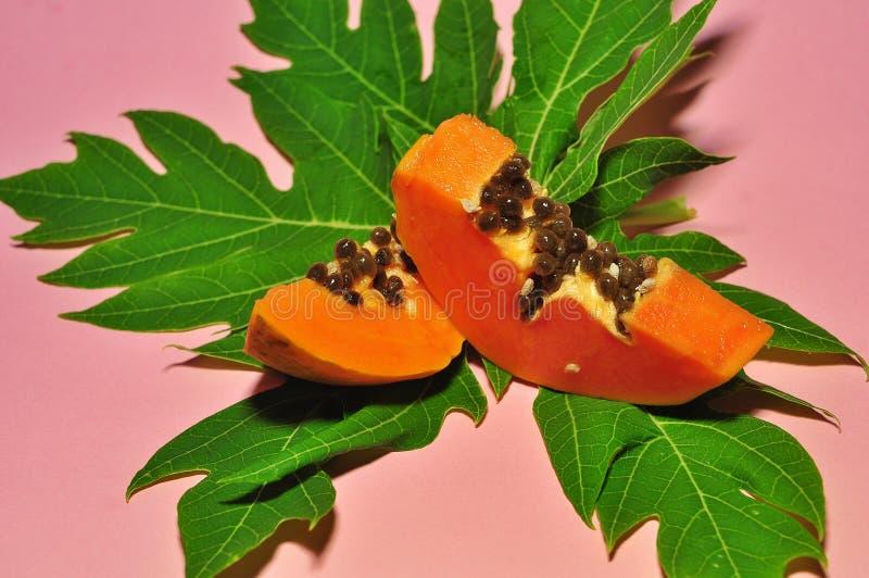 Papayafrukt på rosa bakgrund arkivbild