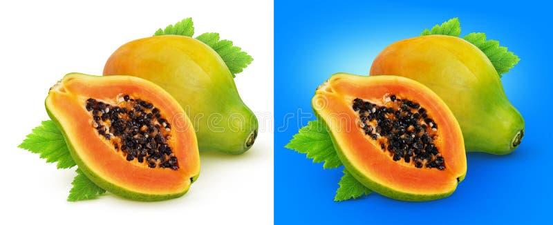Papayafrukt som isoleras på vit bakgrund med den snabba banan fotografering för bildbyråer