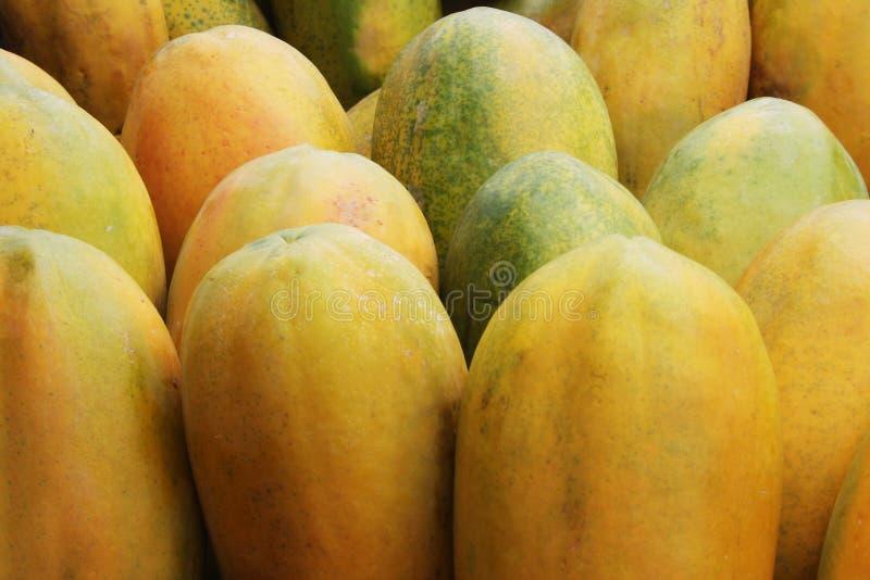 Papayas stock photo