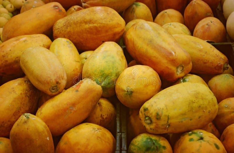 Papayas stockfotos
