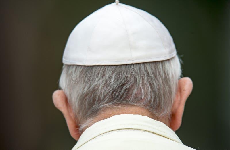 Pape Francis assiste à une cérémonie de guirlande-pose image stock
