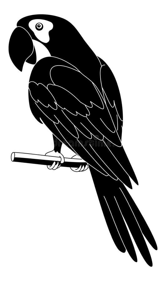 Papegaai, zwart silhouet vector illustratie