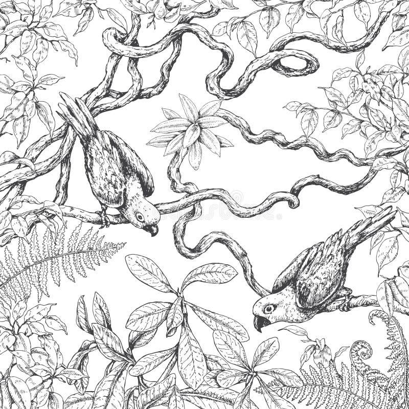 Papegaaien die op takken zitten stock illustratie