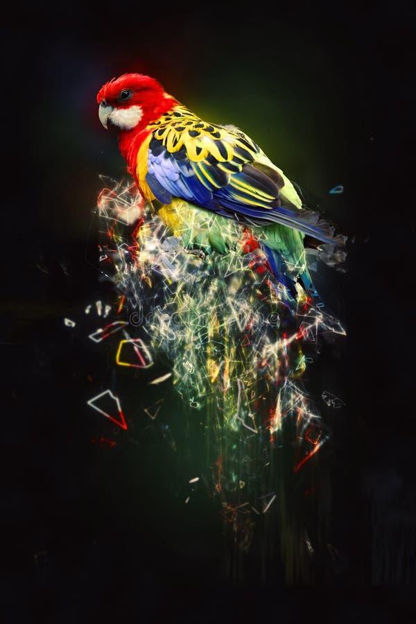 Papegoja abstrakt djurt begrepp arkivbilder