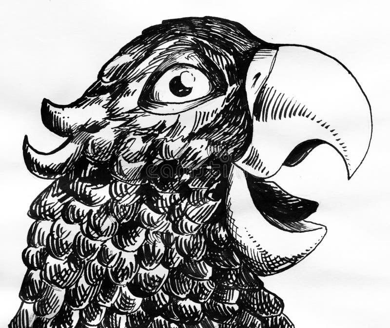 Papegojafärgpulver skissar vektor illustrationer