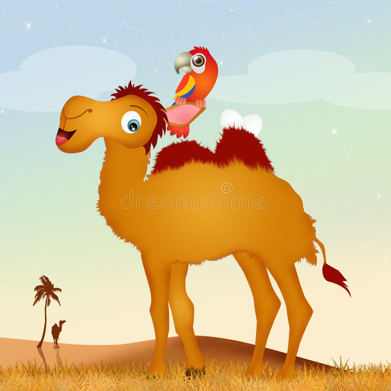 Papegojan bygga bo på kamel stock illustrationer