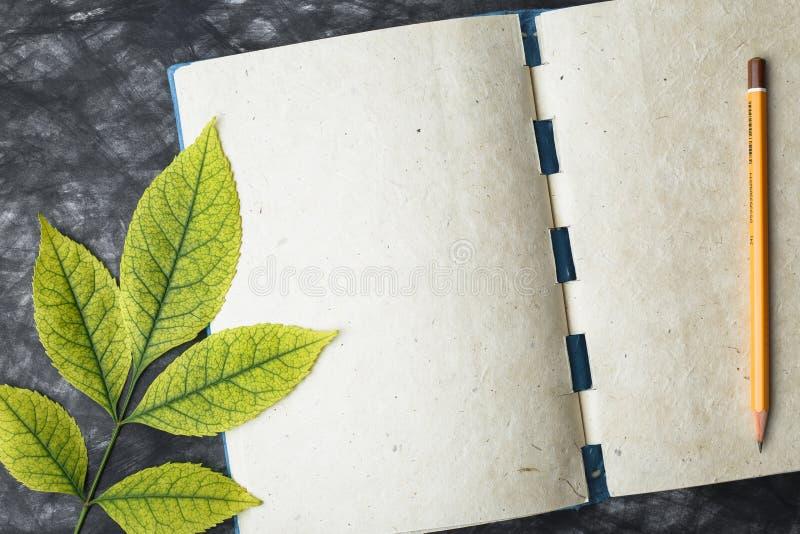 Papel con la textura, hoja amarilla del cuaderno fotos de archivo libres de regalías