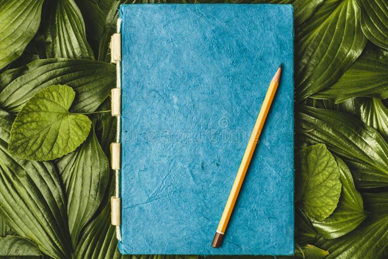 Papel con la textura, hoja verde del cuaderno imágenes de archivo libres de regalías