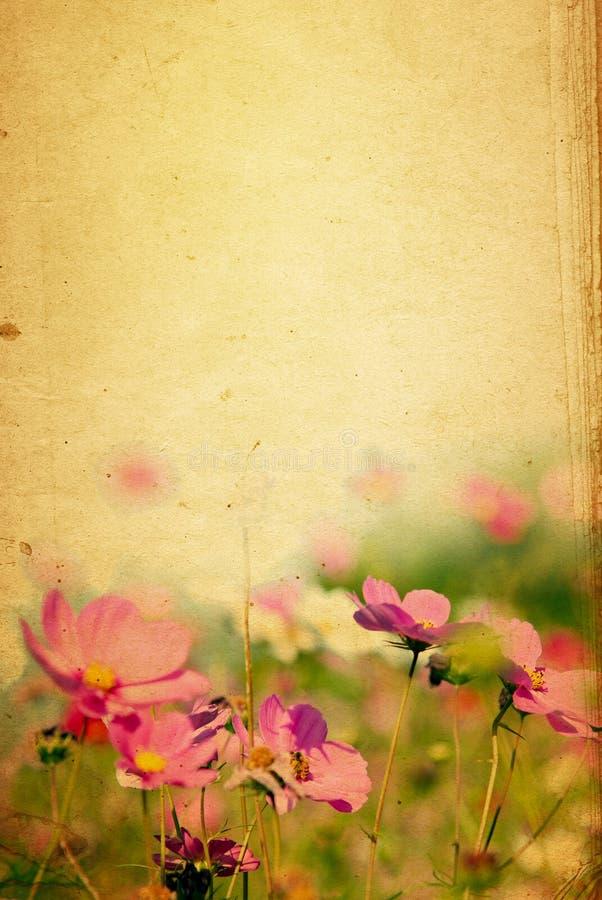 Papel da flor fotos de stock