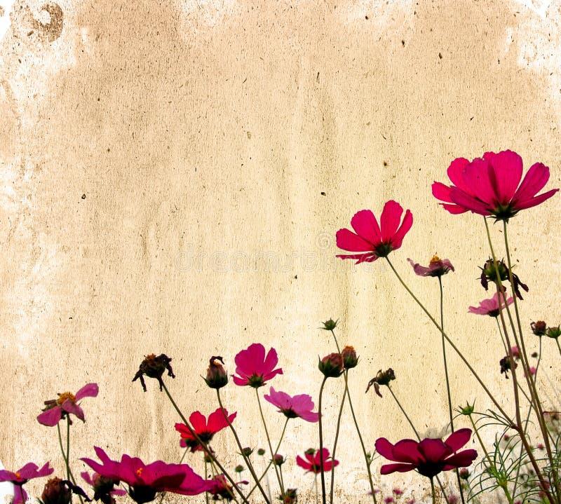 Papel da flor imagens de stock