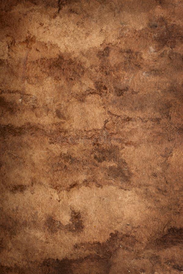 Papel da pele do elefante imagem de stock royalty free