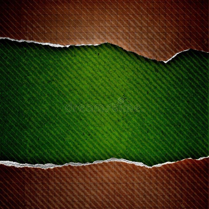 Papel de la célula de Riped stock de ilustración
