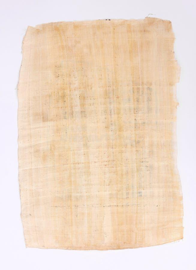 Papel de la hoja del papiro imagen de archivo