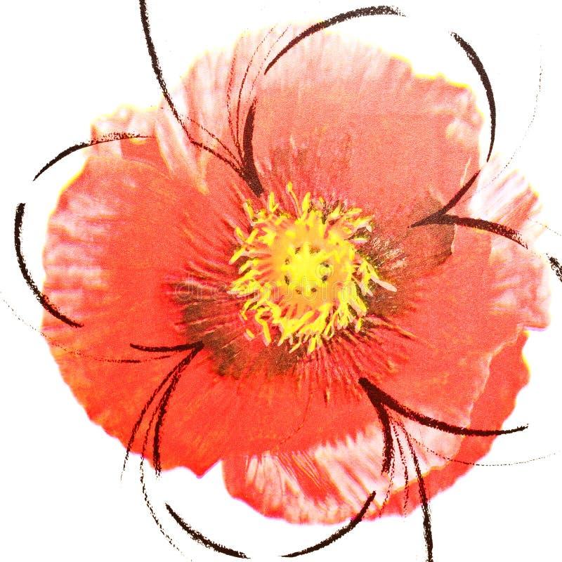 Papel de parede abstrato do vermelho da flor fotografia de stock royalty free