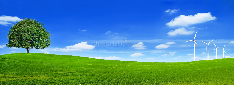 Papel de parede cênico da opinião da paisagem verde do verão Papel de parede bonito Árvore solitário no monte gramíneo e no céu a imagem de stock