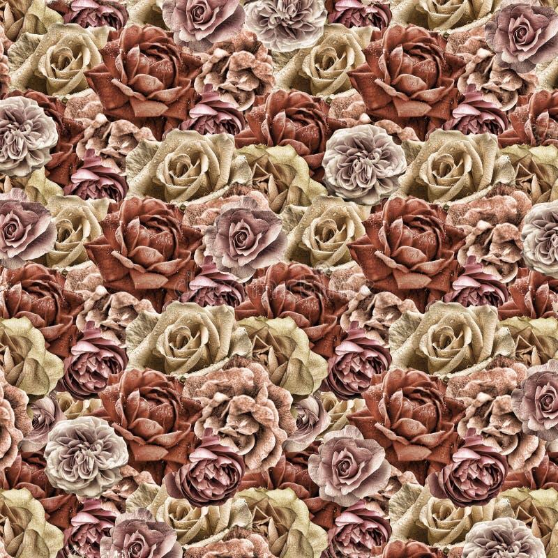 Papel de parede de papel das rosas velhas fotografia de stock