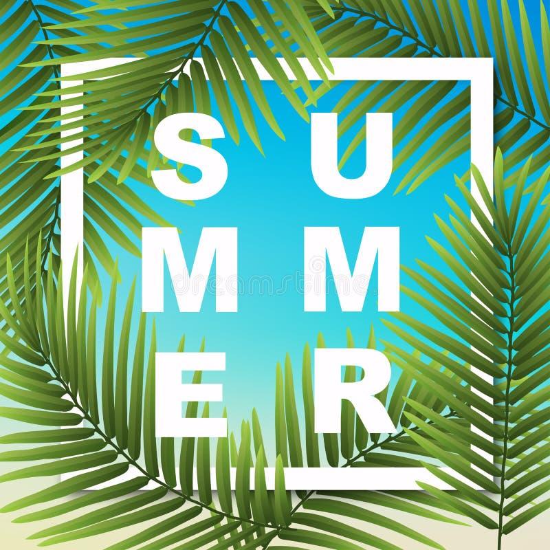 Papel de parede do verão com plantas tropicais Ilustração do vetor ilustração royalty free