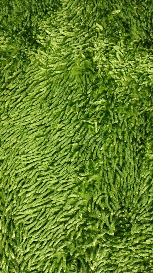 Papel de parede macio verde da textura imagens de stock royalty free