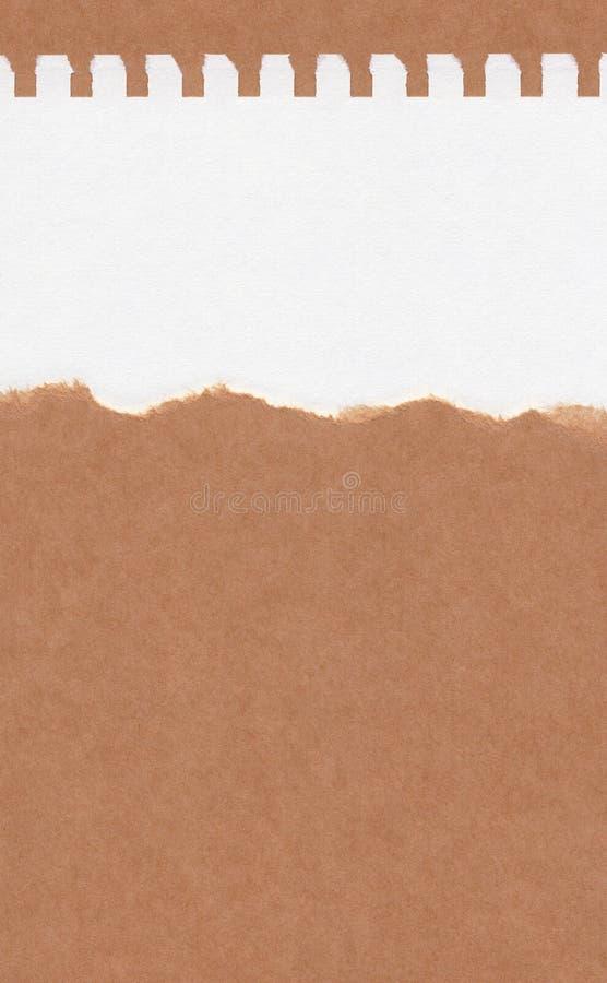 Papel marrom rasgado close up no fundo da textura do Livro Branco do grunge Nota de papel do rasgo, folha de papel marrom com esp fotos de stock royalty free