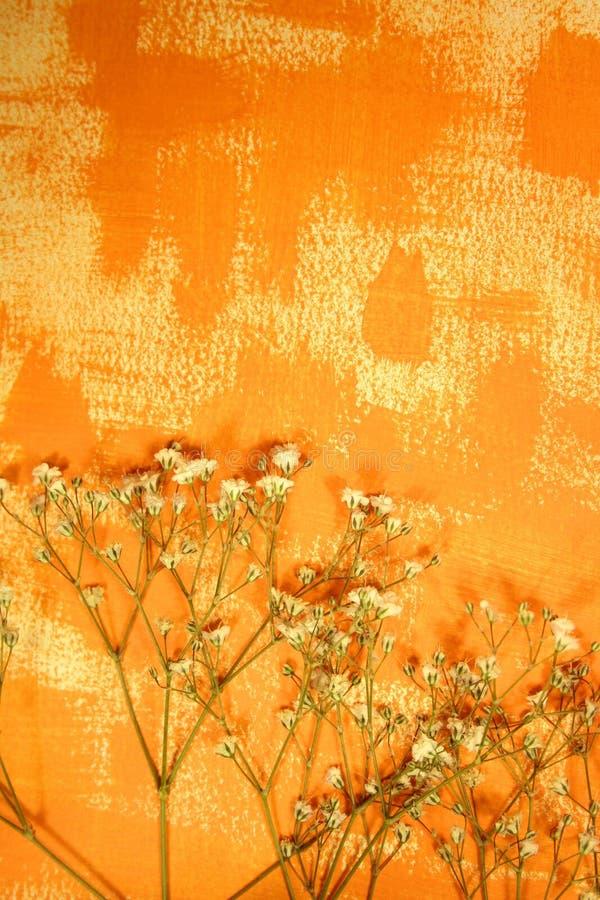 Download Papel Pintado Color Anaranjado Y Flores Secadas Foto de archivo - Imagen de artístico, pared: 7288702
