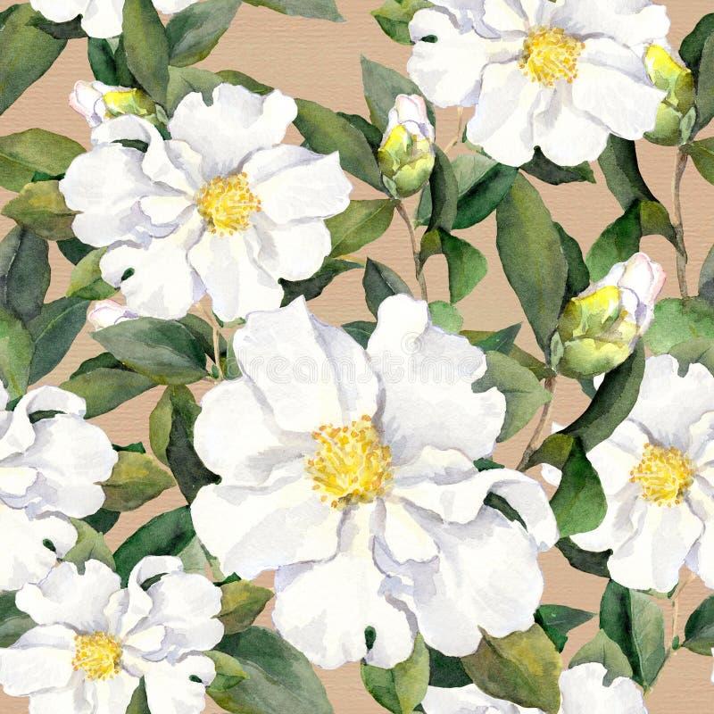 Papel pintado floral inconsútil con las flores blancas magnolia, peonías watercolour ilustración del vector
