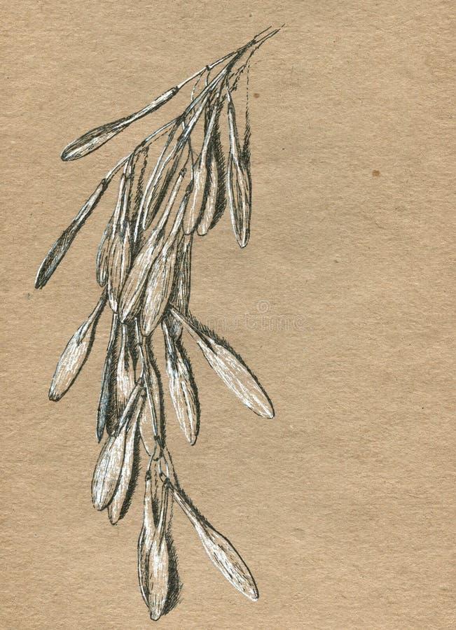 Papel velho do ofício com o desenho da mão da tinta ilustração stock