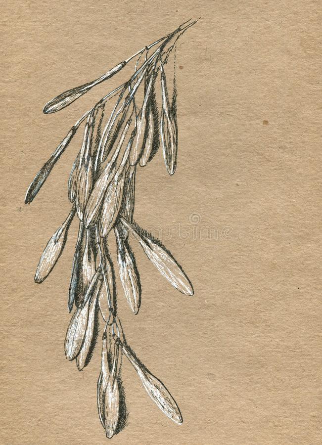 Papel viejo del arte con el dibujo de la mano de la tinta stock de ilustración