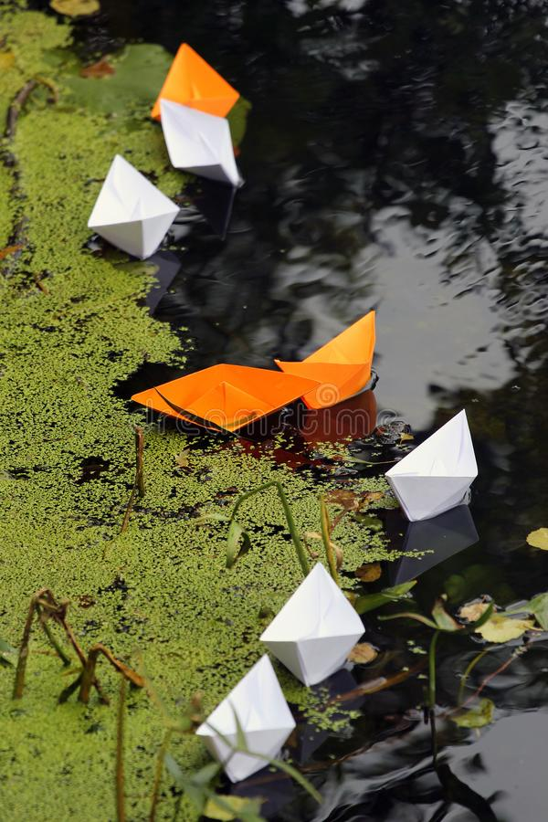 Paper boats stuck in weeds in a backwater.  stock photos