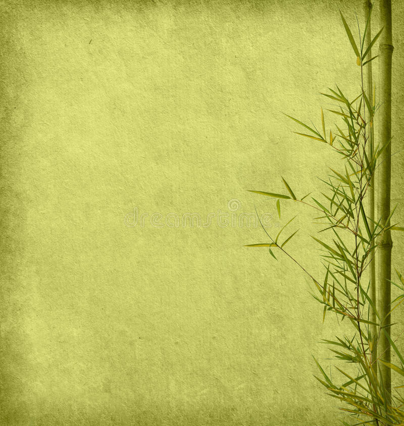 Download Bamboo stock photo. Image of grass, backdrop, china, damaged - 29892192