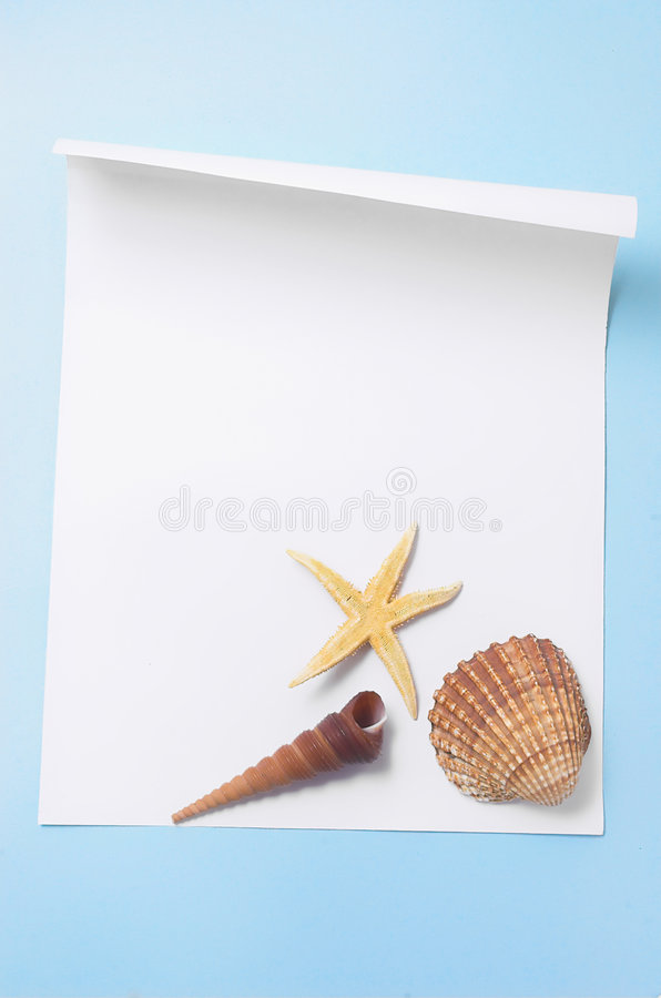 Download Paper with cockleshells stock photo. Image of paper, backgrounds - 2940754